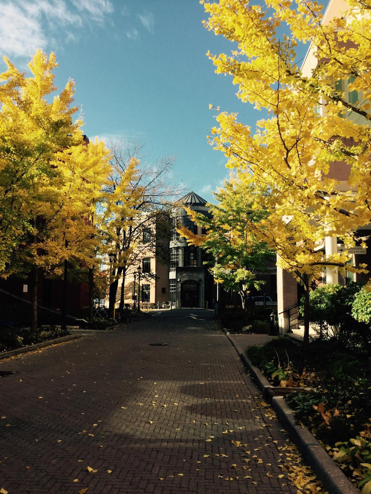 uoft_autumn_2016